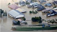 2.800 người Nhật Bản vẫn phải sống trong các trung tâm sơ tán sau siêu bão Hagibis