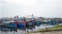 Các tỉnh, thành phố từ Quảng Ninh đến Cà Mau chủ động ứng phó với bão Kammuri