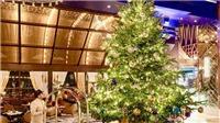 Cây thông Noel đắt nhất thế giới hơn 300 tỷ đồng có gì đặc biệt?