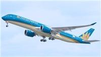 Vietnam Airlines vận chuyển cành đào, cành mai dịp Tết Canh Tý 2020