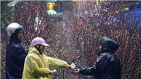 Thời tiết đêm Giáng sinh: Đông Bắc Bộ và Hà Nội tiếp tục mưa phùn, sương mù