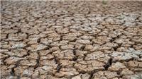 Thế giới sẽ trải qua năm nóng nhất trong lịch sử