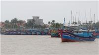 Khẩn trương liên lạc với các tàu trong khu vực ảnh hưởng, nguy hiểm của bão để tránh trú an toàn