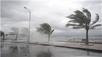 Bão số 8 giảm cấp và di chuyển theo hướng Tây, biển động dữ dội, sóng cao 5-7 m