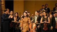 Nghệ sĩ Đinh Hoài Xuân muốn mang Cello tới trường học