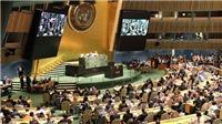 Tháng 1/2020, Việt Nam đảm nhận vai trò Chủ tịch Hội đồng Bảo an Liên hợp quốc
