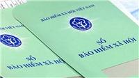 Thành phố Hồ Chí Minh: Đề nghị truy tố 72 đơn vị nợ tiền bảo hiểm xã hội kéo dài