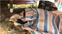 Lạng Sơn: dùng súng bắn 7 người thương vong, kẻ thủ ác chết trong rừng