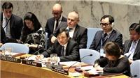 Việt Nam chủ trì Phiên họp của HĐBA về tình hình Israel và Palestine