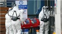 Dịch COVID-19: New Zealand xác nhận trường hợp nhiễm bệnh đầu tiên