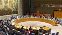 Hội đồng Bảo an Liên hợp quốc hủy các cuộc họp do dịch bệnh COVID-19