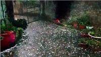 Dự báo thời tiết: Mưa đá gây thiệt hại nặng, vùng núi Bắc Bộ còn mưa rất to