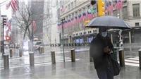 Tổng thống Mỹ cảnh báo: biện pháp phong tỏa trong mùa dịch có thể phá hủy đất nước