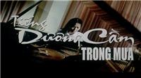 Đạo diễn Lê Hữu Lương: Phiêu du cùng 'Tiếng dương cầm trong mưa'