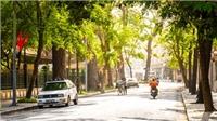 Dự báo thời tiết: Bắc Bộ nắng ấm, Nam Bộ nắng nóng gia tăng trở lại