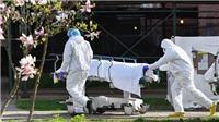Dịch COVID-19: Cập nhật tình hình dịch bệnh sáng 2/6, thế giới có gần 400.000 người tử vong