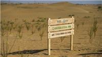 Sa mạc hóa - thách thức môi trường nghiêm trọng toàn cầu