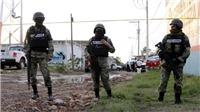 Mexico bắt giữ nhiều nghi phạm trong vụ xả súng đẫm máu