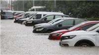 Dự báo bão Bavi quét qua Trung Quốc, Hàn Quốc