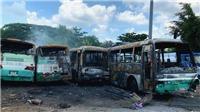 Thành phố Hồ Chí Minh: Cháy lớn thiêu rụi 12 xe ô tô