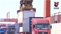 Có khả năng Mỹ-Trung chấm dứt căng thẳng thương mại