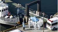 Dịch viêm đường hô hấp cấp do nCoV: Thêm 2 trường hợp nhiễm nCoV trên du thuyền ngoài khơi Nhật Bản