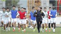 V-League 2021: Sức mạnh của nhân tố mới
