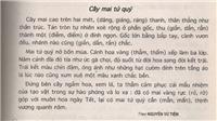 Nguyễn Vũ Tiềm: Chỉ viết khi thương nhớ thanh hình