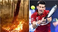 Tennis: Australian Open trong bão lửa