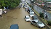Ký sự World Cup: Chạy lụt ở Sochi