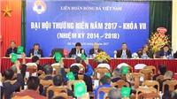 Bóng đá Việt Nam: Anh hùng và… gian hùng!