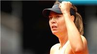 Maria Sharapova: Không bao giờ quá muộn để thay đổi