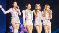 Blackpink tổ chức gặp gỡ fan Hàn Quốc lần đầu tiên sau 9 tháng