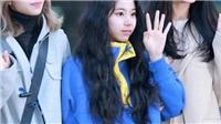 Chaeyoung Twice 'bé hạt tiêu' nhưng độ 'cute' chẳng hề kém cạnh các thành viên trong nhóm