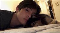 Vlog: Cún cưng Yeontan của V BTS lại khiến nhiều ARMY ghen tị
