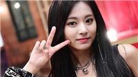 Đến 6 thần tượng nữ K-pop này cũng 'phải lòng' Tzuyu Twice