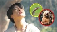 BTS: Theo Jungkook chỉ có thành viên này có thể sống ở nơi 'hoang dã'