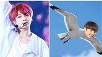Jungkook BTS tiết lộ những nghệ danh muốn sử dụng nhất khi 'debut'