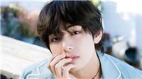 6 nam thần có mũi đẹp lạ theo mắt fan Hàn: V BTS chiếm 'đầu bảng'