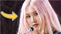 Tại sao Rosé Blackpink luôn để tóc tẩy dù fan rất ghét?