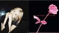 Rose Blackpink sắp tung ra sản phẩm solo mới?