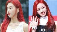 Những sao nữ Kpop được mệnh danh là Nàng tiên cá 'phiên bản đời thực'