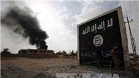 Tổng thống Nga xác nhận IS bắt giữ gần 700 con tin tại Syria