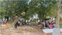 Hải Phòng: Đột kích ổ xóc đĩa liên tỉnh, bắt 40 đối tượng