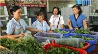 Từ ngày 15/12, Hà Nội mở đợt thanh tra, kiểm tra an toàn thực phẩm phục vụ dịp Tết