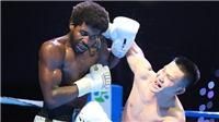 Giải Boxing HBF khiến võ đài Việt dậy sóng