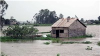 Mực nước sông Cửu Long đang lên, nguy cơ ngập lụt vùng trũng tại Đồng bằng sông Cửu Long