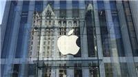 'Đại gia' Apple và Samsung bị phạt hàng triệu USD vì thiếu trung thực trong kinh doanh