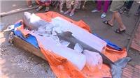 Bến Tre: Loài cá 'lạ' ngư dân bắt được là cá heo nước ngọt