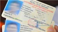Tổng cục Đường bộ Việt Nam đề nghị xử lý tình trạng rao bán và bao đậu thi cấp giấy phép lái xe trên mạng xã hội